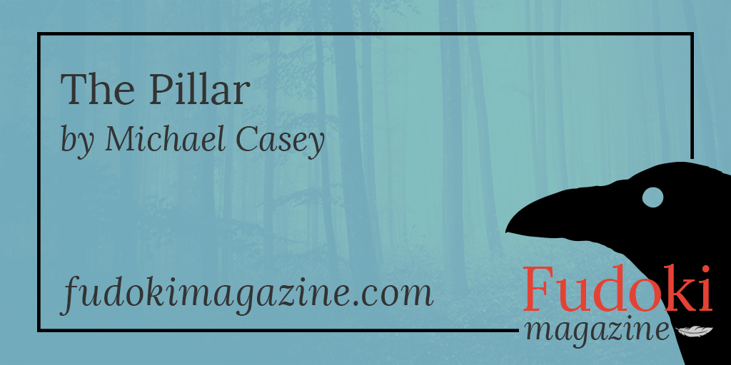 The Pillar by Michael Casey