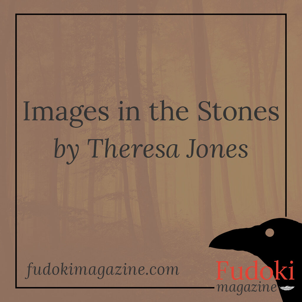 Images in the Stones by Theresa Jones