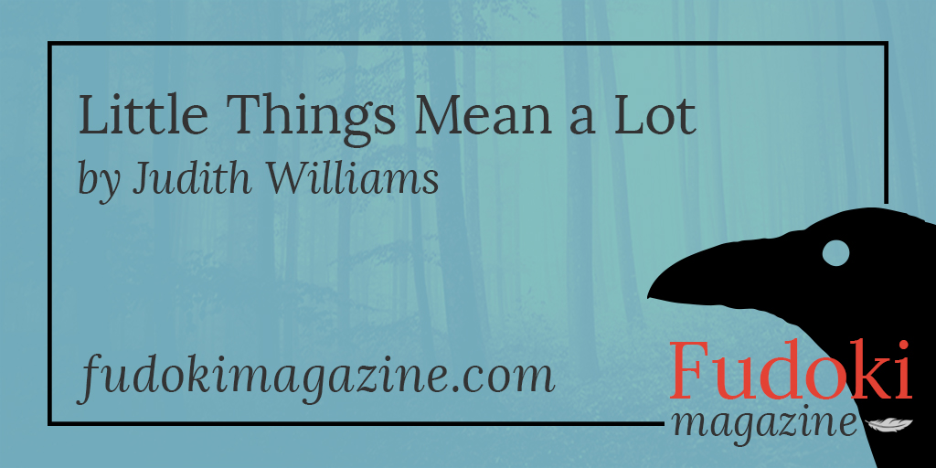 Little Things Mean a Lot by Judith Williams