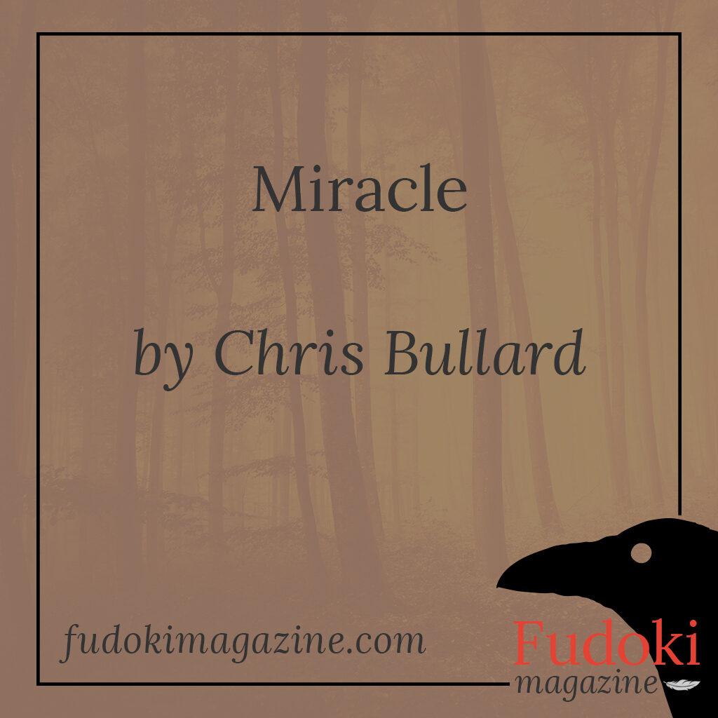 Miracle by Chris Bullard
