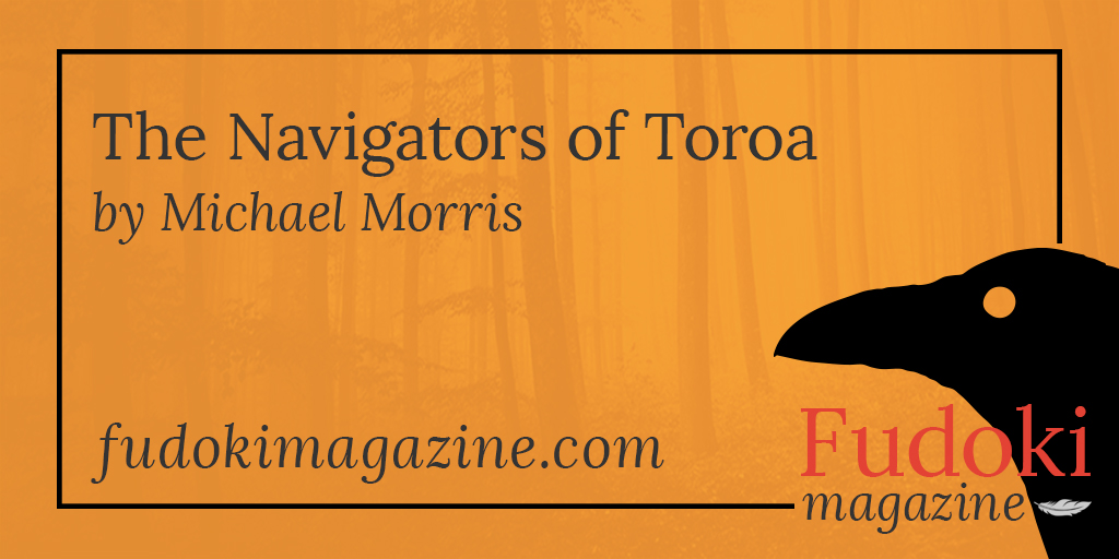 The Navigators of Toroa by Michael Morris