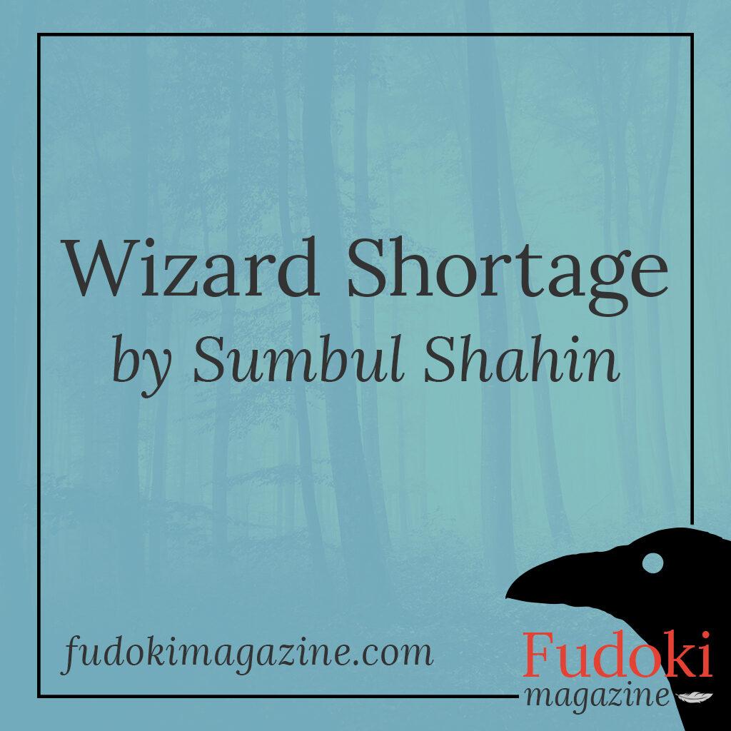 Wizard Shortage